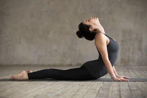 joga-za-zdravje-in-vitalnost-02E6FBF921-92D3-C2E7-DE43-1DB73288C1C3.jpg