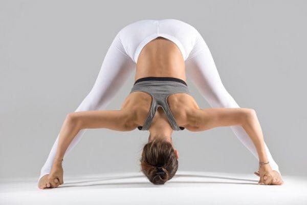 joga-za-zdravje-in-vitalnost-03E9AB0D03-D701-34E5-83BE-5EC2F3BD6E23.jpg